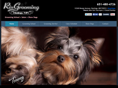 Rio Grooming School Website Rio Grooming Gets a New Doo!